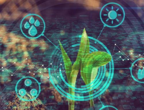 Artificial intelligence, IoT, big data, blockchain: l'agricoltura del futuro è arrivata